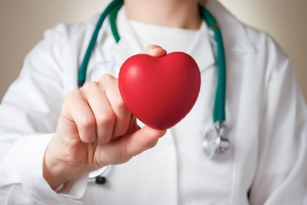 врач держит форму сердца в руке