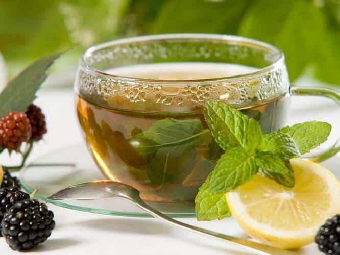 чай с мелиссы
